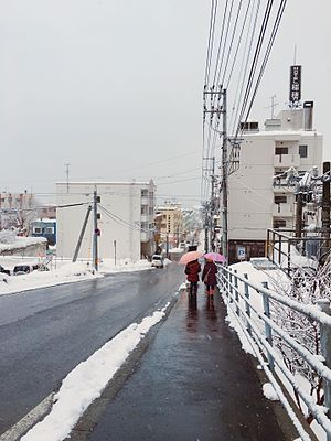 Love Letter (1995 film) - The street of Otaru where Shunji Iwai shot Love Letter.