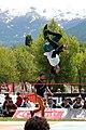 Outdoor Mix Festival Embrun 2015 (108748229).jpeg