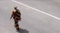 Owru yari 2016, man in the street, foto Ada Korbee, 01.png
