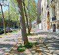 P1320266 Paris VII avenue Duquesne rwk.jpg