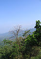 Pakshipathalam - views from the way to Pakshipathalam from Thirunelli (215).jpg