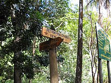 Wooden signs in a forest