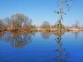 Parc naturel régional de Brière.jpg