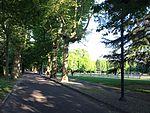 Parco di Rovellasca 2.jpg