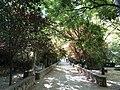 Parque de Castril (45261104142).jpg