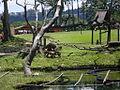 Parque del Este 2012 055.JPG