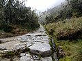 Part of the Inca Trail.jpg