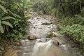 Parte do Rio Macaé.jpg