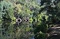 Passadiços do Paiva XII (44008030130).jpg