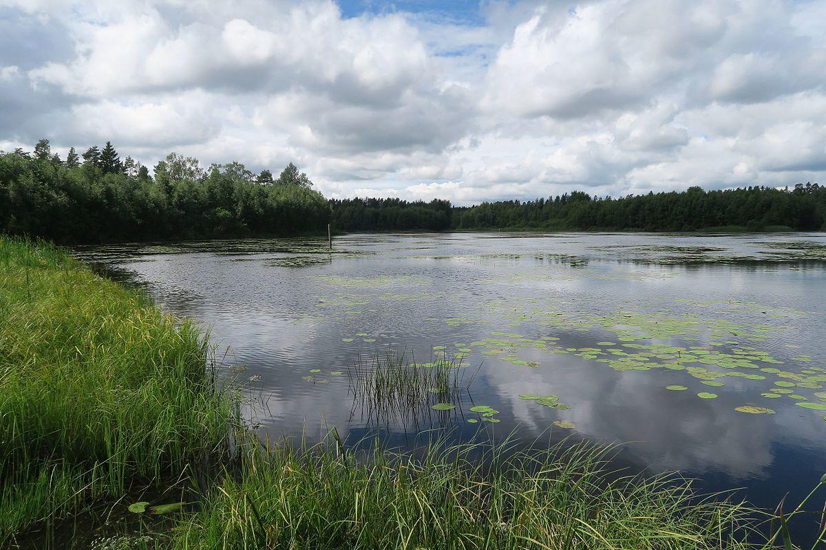 Patajärvi (Eura)
