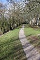 Path along The Green, Newnham - geograph.org.uk - 1729111.jpg