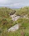 Path from Port nan Carannan (geograph 5085306).jpg