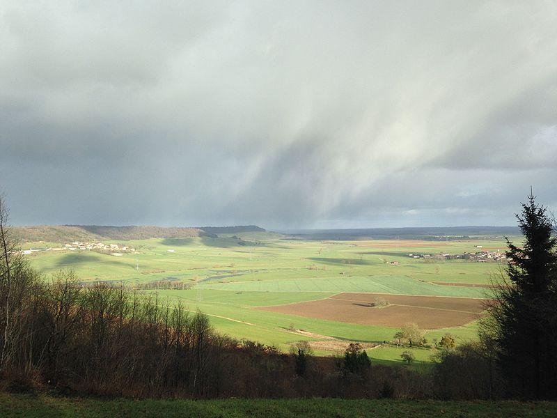 La superficie ainsi que la qualité paysagère de la pelouse calcaire de Maxey-sur-Meuse en font un site exceptionnel.
