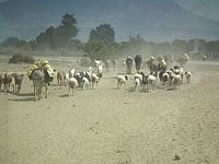 People in Tanzania 1358 Nevit.jpg
