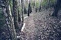 PermaLiv Sundvika 23-04-33.jpg