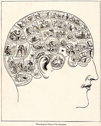 Phrenology diagram from People's Cyclopedia of Universal Knowledge, 1883