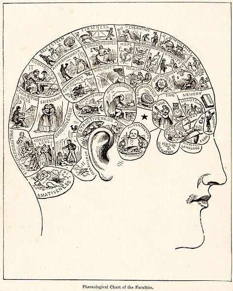 Archivo:PhrenologyPix.jpg - Wikipedia, la enciclopedia libre