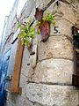 PikiWiki Israel 35461 ako old city.jpg