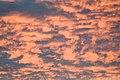 Pink Morning Clouds (2362223876).jpg