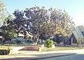Plaza barrio kami.jpg