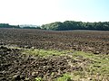 Ploughed fields - geograph.org.uk - 534940.jpg