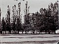 Połacak, Rynak. Полацак, Рынак (1889-91).jpg