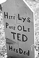 Pore Ole Ted (9468489681).jpg