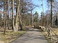 Prague Kunraticky Forest Centr2.jpg