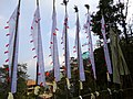 Prayer Flags at Bhutia Busty Monastery with Building Backdrop - Darjeeling - West Bengal - India (12406446905).jpg
