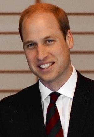 Prince William February 2015.jpg