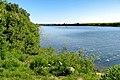 Pronya river in Spassky district of Ryazan Oblast.jpg