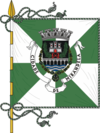Flag of Mirandela