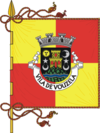 Flag of Vila de Vouzela