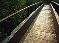 Puente de madera (Aranga) - panoramio.jpg