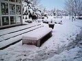 Puerta de la Biblioteca - UCLM - Día de Nieve - panoramio.jpg