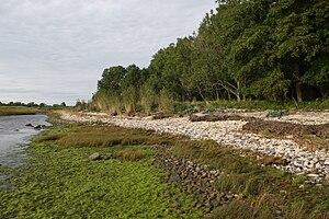 Puhtu - Coast of Puhtu.