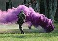 Purple smoke grenade.jpg