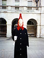 Queens Horse Guards (5678667497).jpg