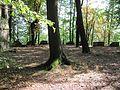 Radebeul Blechburg Details Zinnenkranz der Bastion.jpg