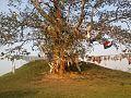 Ramagrama stupa in Nawalparasi.jpg