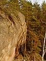 Repovesi kalliomaalaus.jpg