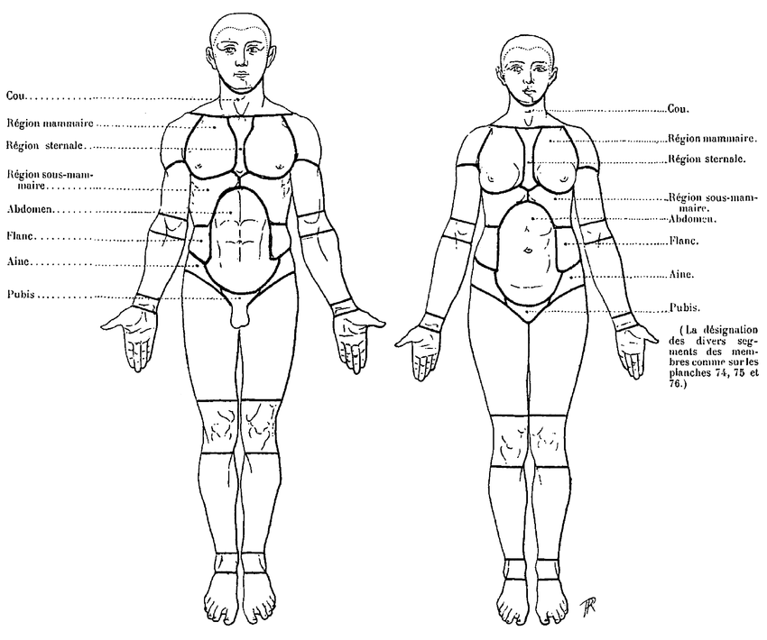 douleur bas du dos hanche