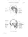 Richer - Anatomie artistique, 2 p. 44.png
