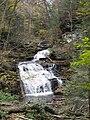 Ricketts Glen State Park Mohican Falls 4.jpg