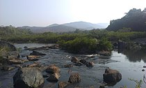 River Aghanashini.jpg