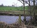 River Camowen, Garvaghy - geograph.org.uk - 1103914.jpg