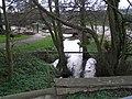 River Colne - geograph.org.uk - 745109.jpg