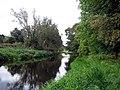 River Derwent - geograph.org.uk - 1516120.jpg