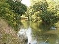 River Dove - geograph.org.uk - 231426.jpg
