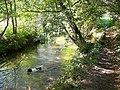 River Nadder, Tisbury - geograph.org.uk - 1493894.jpg